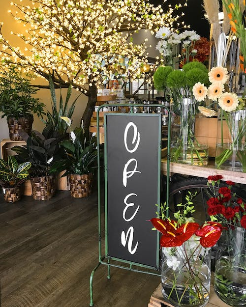 Lovely floral designs and thriving plants surround a hand-written sign, reading open for business