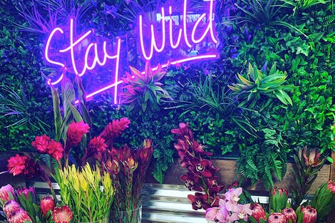 Stay Wild, encourages a neon sign inside our floral design studio